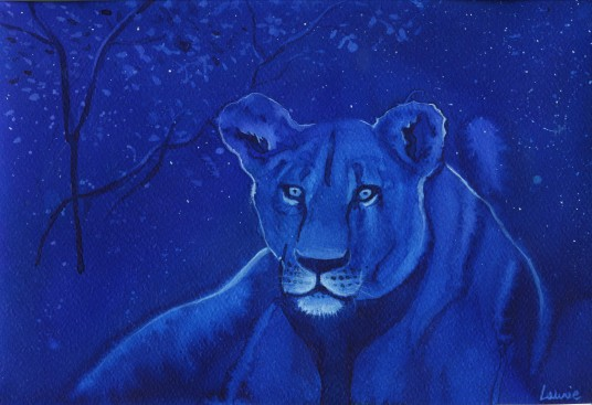 The lioness night